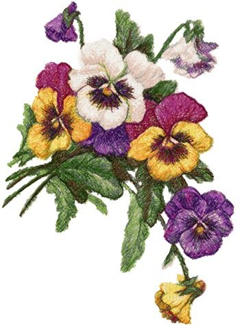 Advanced Embroidery Designs - Pansies