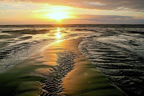 Waitarere Beach, New Zealand
