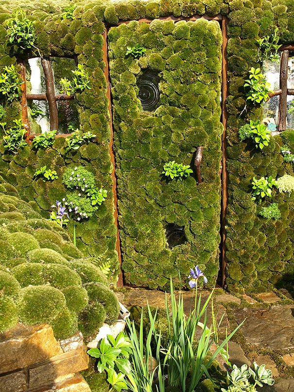 Moss Door-Japan