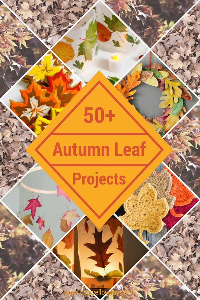 50+ Autumn Leaf Projects for Fall - Crafts, activities, bakes and decorations.