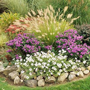 ornamental grass garden - live this look - would like to do along back fence line