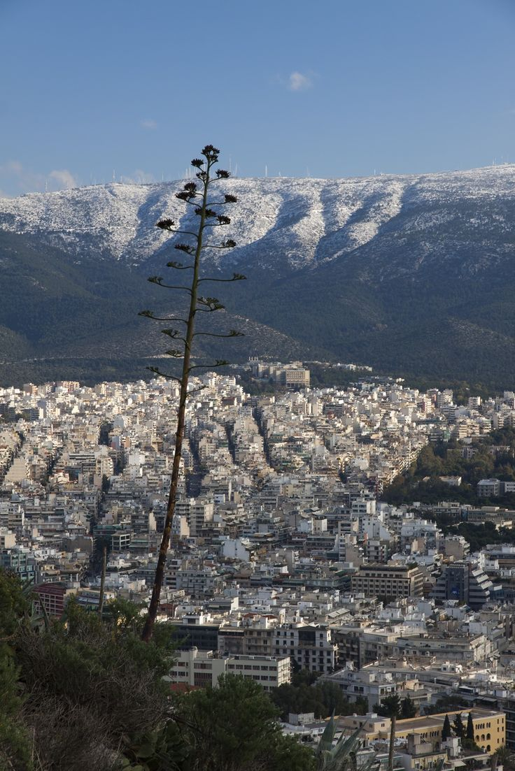 View from Mount Lycabettus, Athens, Attica, Greece by ...