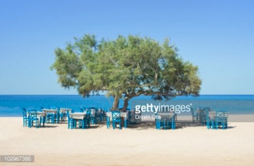 Restaurant tables and chairs on beach under big tree... #naxos: Restaurant tables and chairs on beach under big tree #naxos…… #naxos