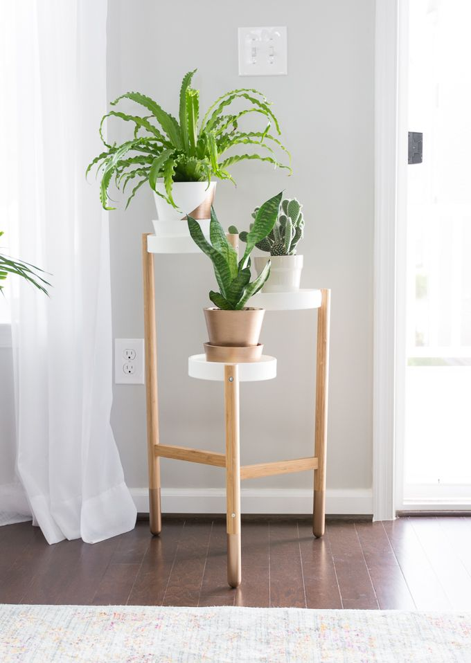Image Result For Decorating A Modern Office Space With Plants