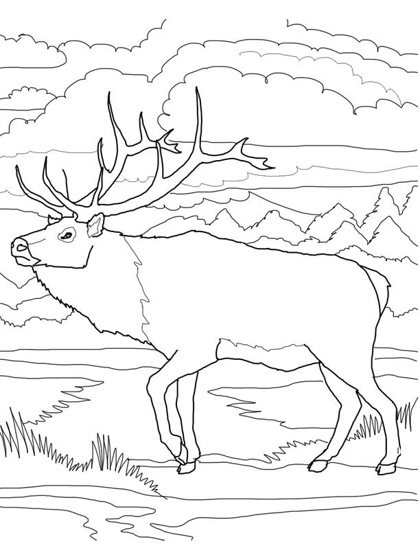 quebec city coloring pages - photo#3