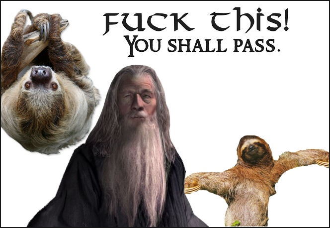 A little Lord Of The Rings/Gandalf vs sloth humor for you. :P