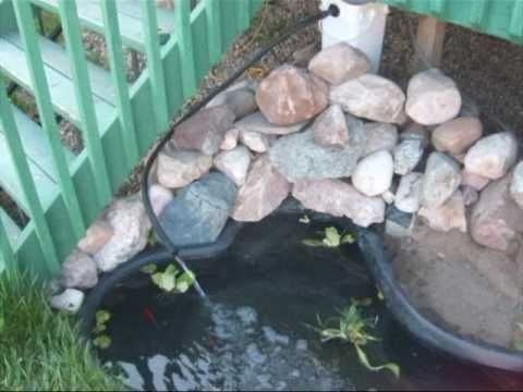 17 Best Images About Turtle Pond On Pinterest Raised Deck Pictures Of And 55 Gallon