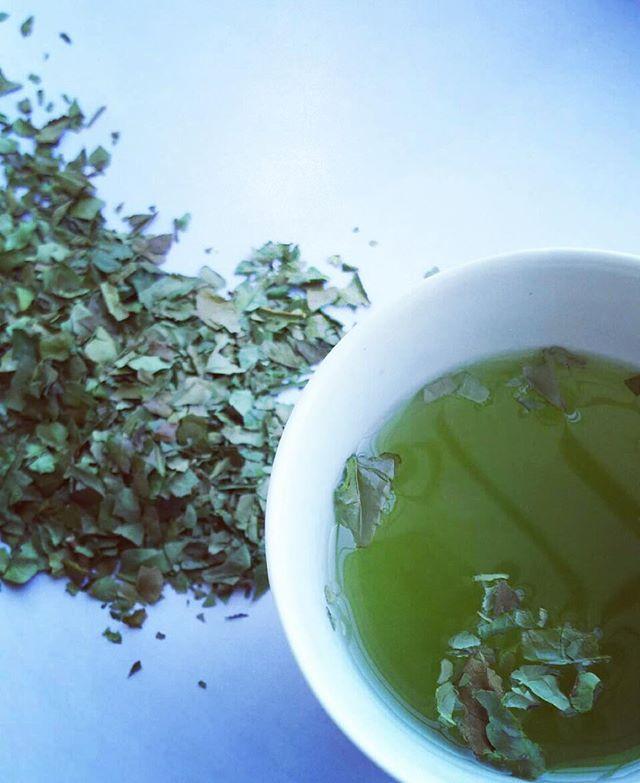 鉱石茶会の茶。 . 遅れ芽摘み 錬金術で使われた硫黄にちなみ、レモンイエローの美しい水色の茶を冷茶で。 . . 錬金ブレンド かぶせ茶の毛羽と芽茶。 漢方薬と同じ特殊な作り方をした金色の碾茶を浮かべて。 . . 今回の茶も、日本茶デザイナーのSachiさんにお願いしました。 . 錬金術。 鉱物や植物など自然のものを用い、金でないものから黄金を、不老不死を、完全なるもの「賢者の石」を、創り出そうとしたものだそう。 日本茶は、日本人にとっての、賢者の石かもしれません。nano518pico