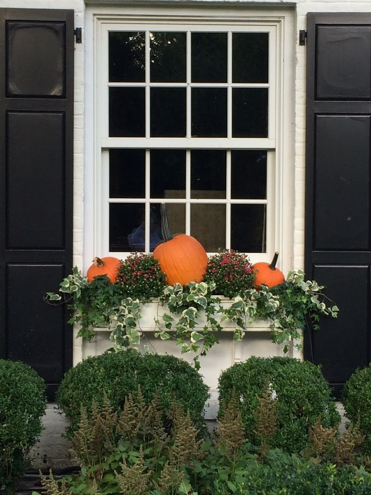 468 best images about autumn on pinterest pumpkins owl for Autumn window decoration