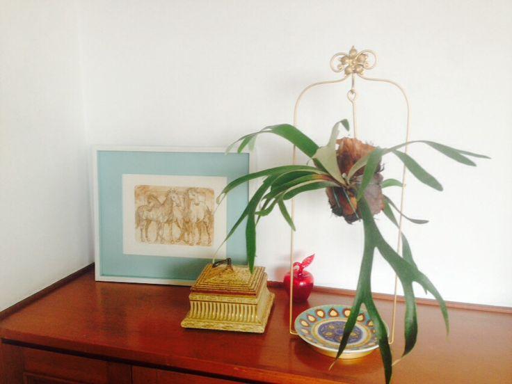 Platicero Mini Angie Oh! En hierro forjado tipo columpio en color dorado o bronce. Con aplicación en forma de flor y base redonda con arabescos. 90cm de alto. Ideal para decorar cualquier espacio. Info por whatsapp 3152227007