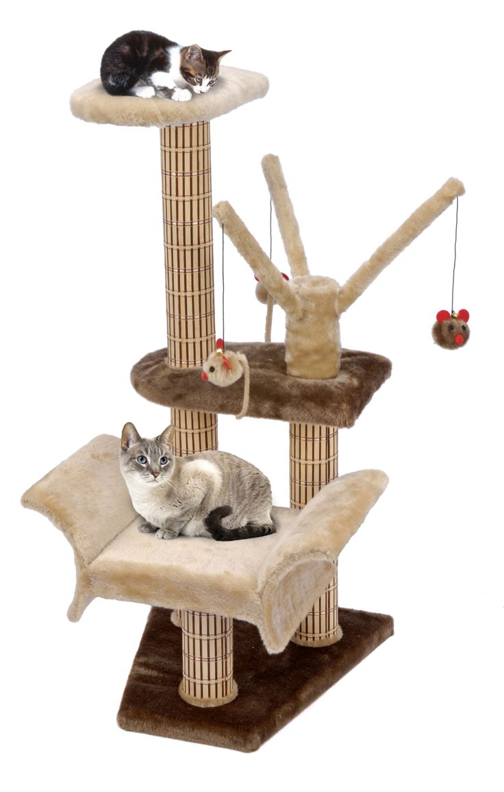 best large cat trees images on pinterest  cat tree cat  - catlife™ lounger with play tree climbing tower  scratching posts bypennplax