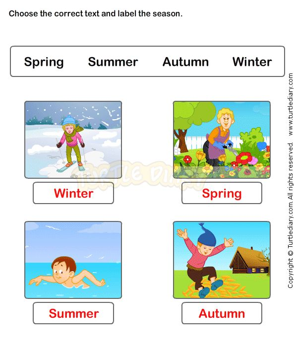 seasons worksheet 4 science worksheets kindergarten worksheets weather worksheets. Black Bedroom Furniture Sets. Home Design Ideas