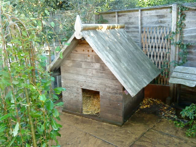 duck house ideas 28 images wood duck house plans to