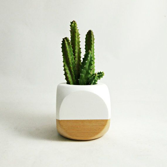 This mod colorblocked planter that will hold a cactus to defend you from your enemies. | 19 Tiny Plants To Cheer Up Your Sad Work Desk