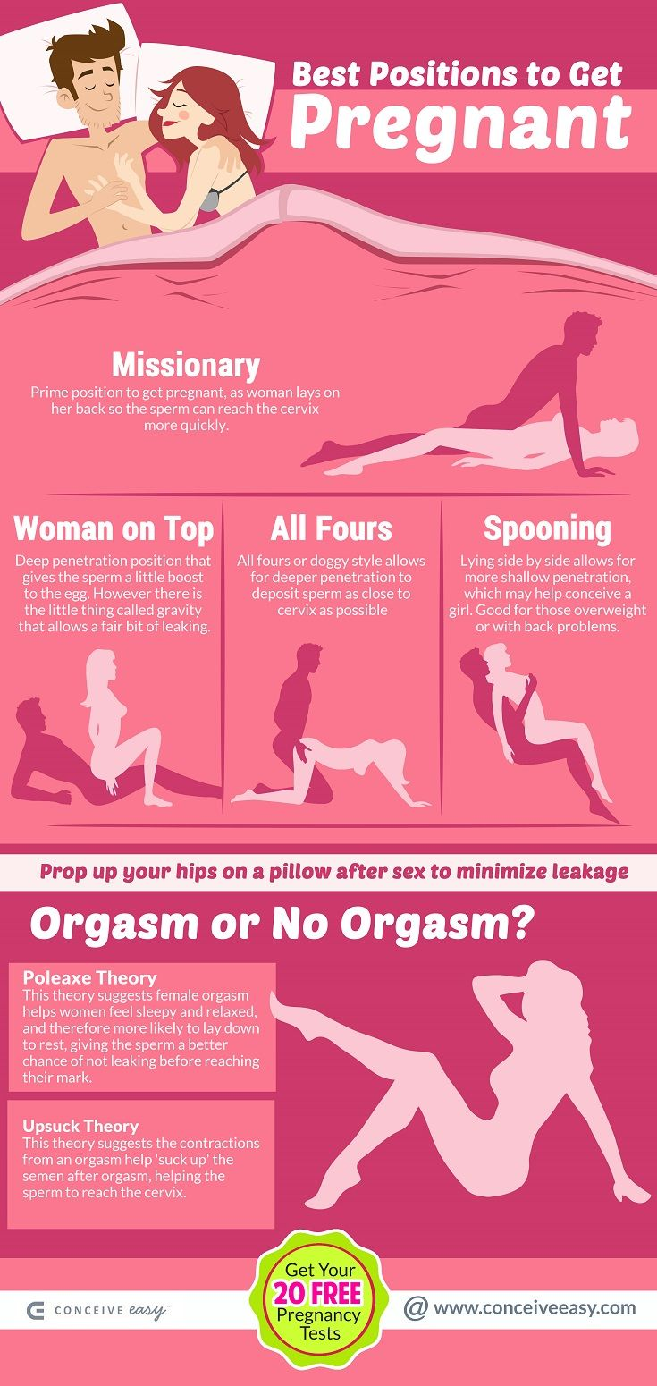 Best Positions To Get Pregnant Infographic  Getting -9118