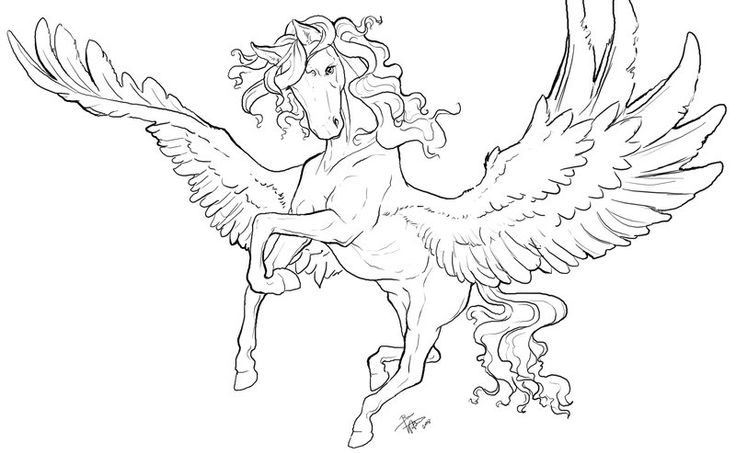 97 best images about pegasus to color on