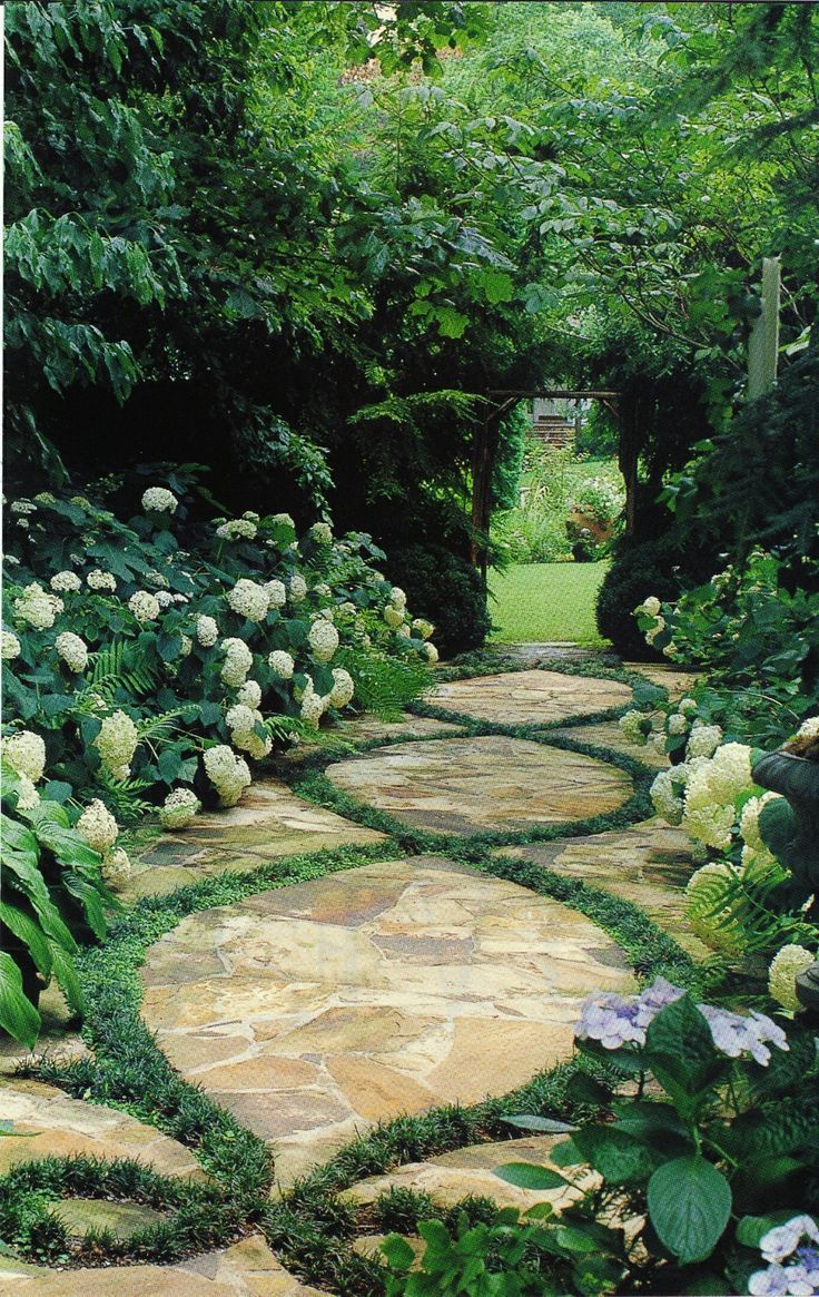 beautiful pathway - break up the stone (or even concrete) with a design and plant the low growing decorative grass and I love the hydrangeas alongside