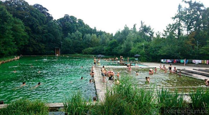 Zwemvijver boekenberg 2019 swim free at antwerp deurne - White oak swimming pool opening times ...