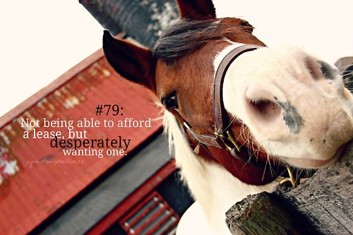 Equestrian Problem #79: Not being able to afford a lease, but desperately wanting one.