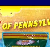 Middleswarth Potato Chips, Tastkykakes, Birch Beer, Pennsylvania Snacks