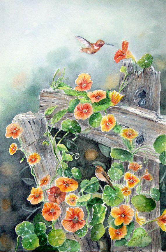 Aquarelle originale de colibris et Capucine sur vieille clôture