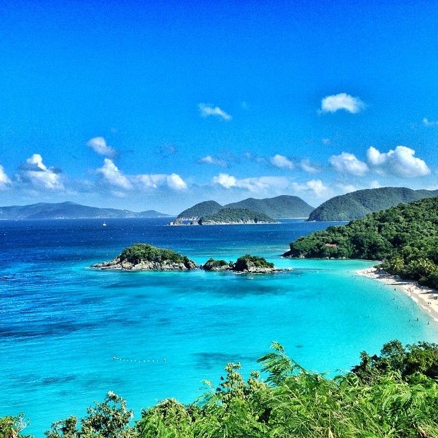 Trunk Bay, St. John, U.S. Virgin Islands Trunk Bay is hemmed in by dense forests fringed with coconut palms and sea grapes. The beach has the signature Caribbean turquoise water and white sand, but you'll see the best color on the beach's snorkeling trail. Snorkel, SNUBA, or scuba dive the 225-yard trail to spot 30 species of tropical fish and the occasional sea turtle. Underwater signs help you identify what just swam past you.