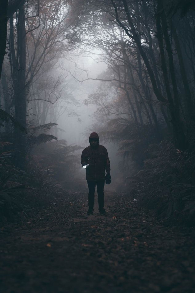 Dark and moody photography