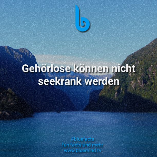 #bluefacts #fakten #zitate #weisheiten #sprüche #spruch #weisheit #zitat #quotes #fakt #facts #fact #lernen #wissen #iq