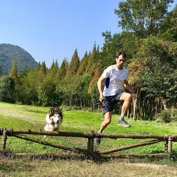 #running and #jumping with some #husky love  in Western #China Mountains #instarunners #chengdu