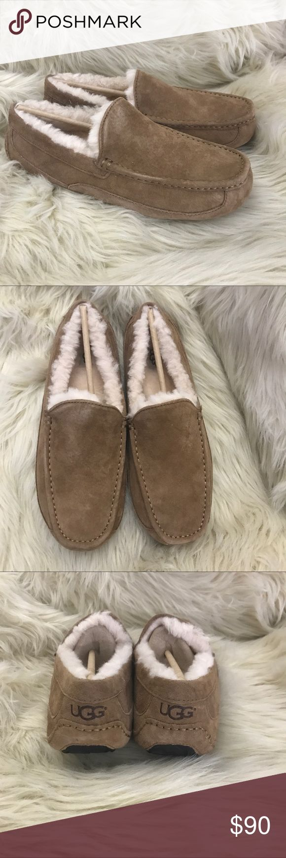 Men's UGG ascot suede sheepskin slippers ✨BNWOB!✨  ✅Sizing: TRUE TO SIZE  💎Never worn or used!💎   🛍2+ BUNDLE = 💰SAVINGS!  ‼️= PRICE FIRM!   💯AUTHENTIC BRANDS, ALWAYS!  ✈️ SUPER FAST SHIPPING!   🖲 USE THE OFFER BUTTON TO NEGOTIATE!  ❓ Questions? Just comment! ❤️  🤗❤✌🏼HAPPY POSHING!✌🏼❤️🤗 UGG Shoes Loafers & Slip-Ons