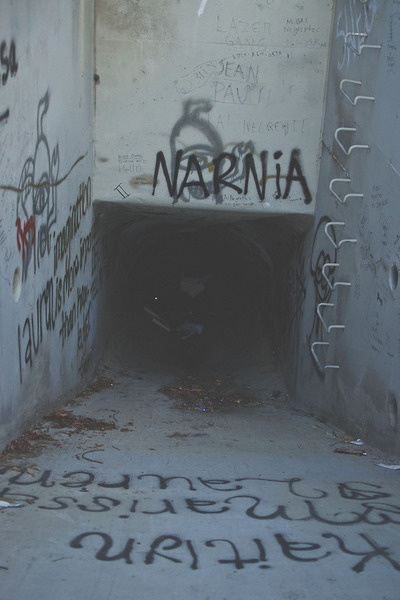 """Typo and Lee was just walking, when they stumbled upon this graffiti. """"Well, isn't this just sad,"""" said Typo. """"I always thought Narnia would be...more brighter."""""""