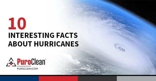 Did you know? Hurricanes rarely produce thunder and lightning because they normally do not have the vertical winds needed to make the electrical fields. Here are more interesting facts about hurricanes: