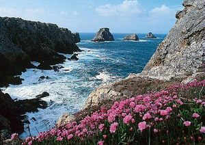 Brittany (Bretagne) Picture Gallery and Photo Tour: Pointe de Penhir in Brittany