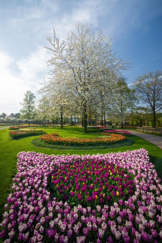 The Most Beautiful Flower Garden In The World Without People My 31 Pics In 2020 Beautiful Flowers Garden Most Beautiful Gardens Most Beautiful Flowers