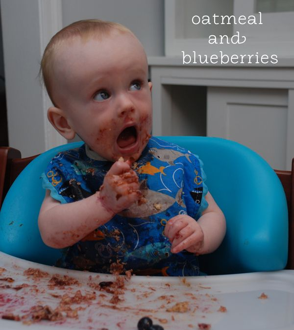 Baby Led Weaning - The Healthy Mummy