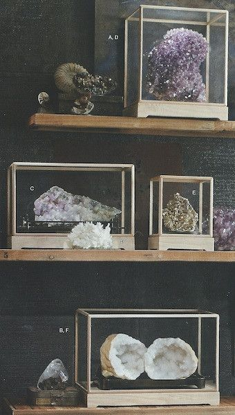 25 Best Ideas About Display Cases On Pinterest Retail