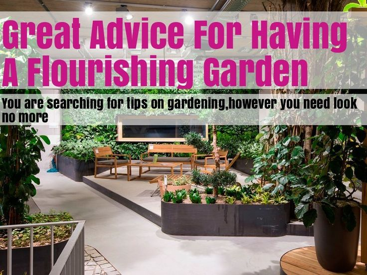 Helpful Advice And Tips On Organic Gardening – Home Gardening