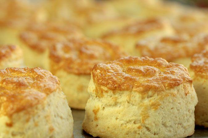 Deliciosa receta de bisquet, puedes agregarle mermelada de tu preferencia o simplemente mantequilla y frutas.