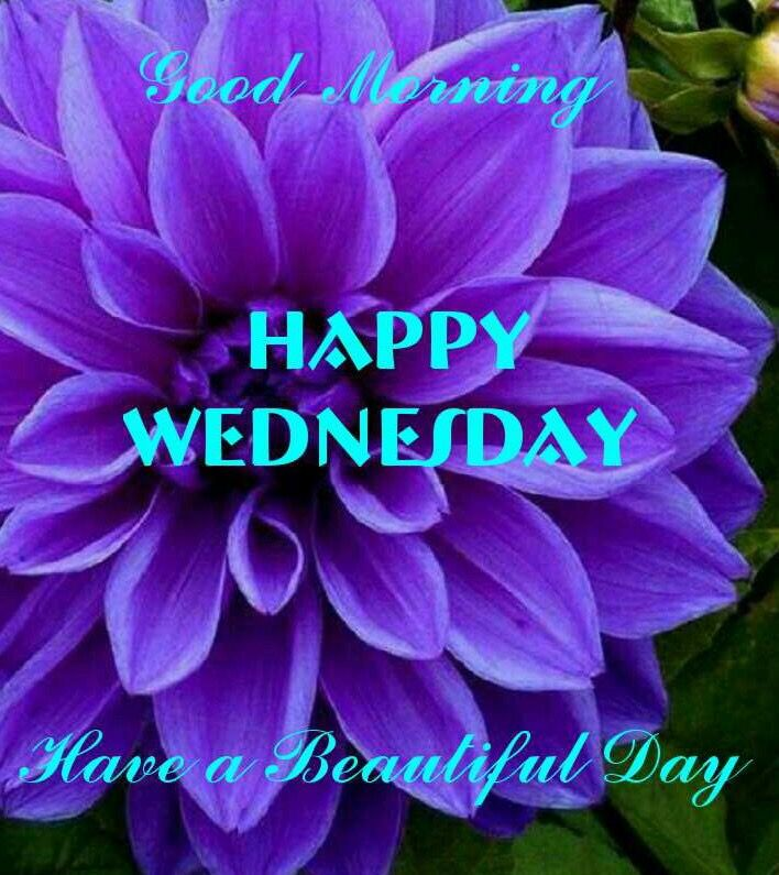 Good Morning Happy Wednesday Greetings | Good morning wednesday ...