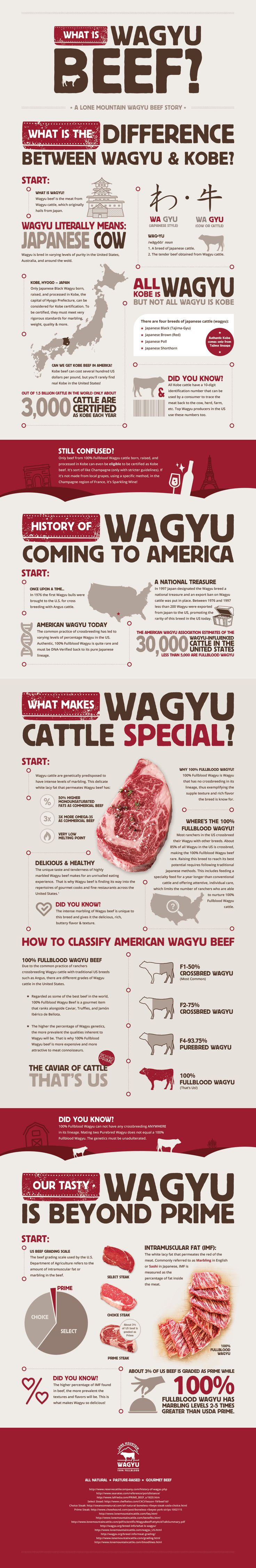 Questions about Wagyu? What is it? Are Wagyu and Kobe the same thing? Why is it so special? This infographic lays it out.