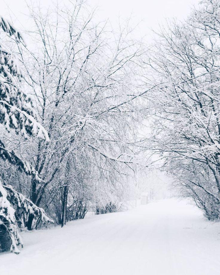 This is what my childhood winters looked like . . . . . . . #winter #porvoo #visitporvoo #scandinavia #scandinavianwinter #finland #finnishwinter #snow #visitfinland #hometown