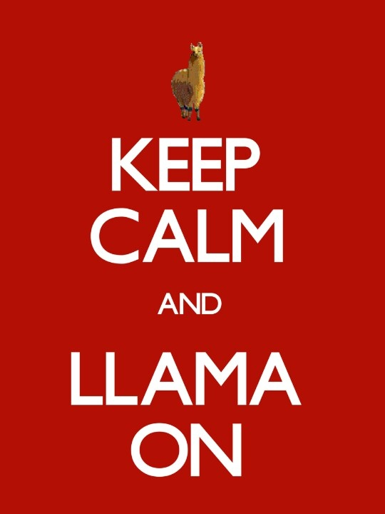 KEEP CALM AND LLAMA ON!!!!! I LOVE LLAMAS!!!!!!!!!!!