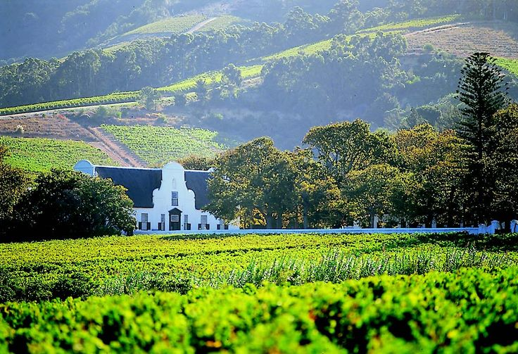 4. Winelands South Africa's world-famous wines are produced mostly in the Cape Winelands – a region of great beauty, fertile soil and historic towns surrounded by impressive mountains. One of South Africa's most visited destinations; the towns of Stellenbosch and Paarl are less than 30 minutes' drive from Cape Town, while Franschhoek is a little further afield.