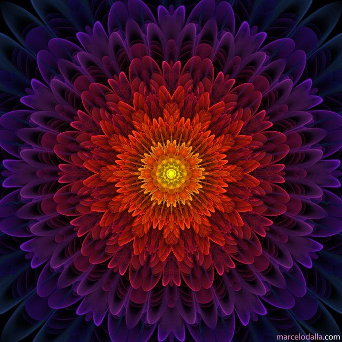 ATLANTE       Olá amigos!   Apresento uma série de mandalas que lembram flores, criadas a partir de fractais . O álbum completo de manda...