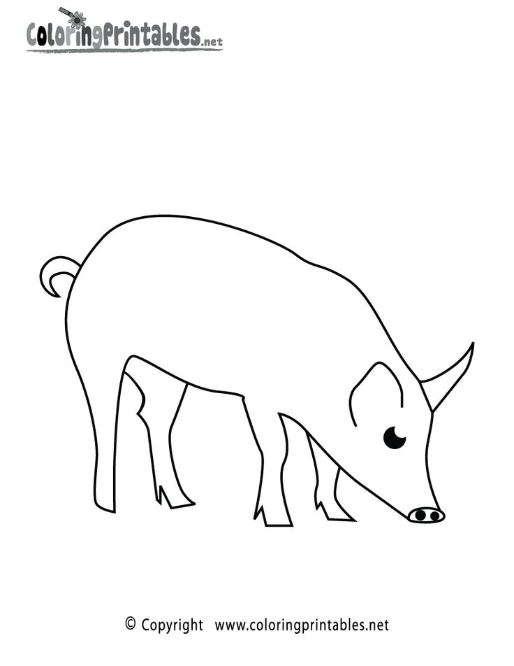 Pig Coloring Page Printable