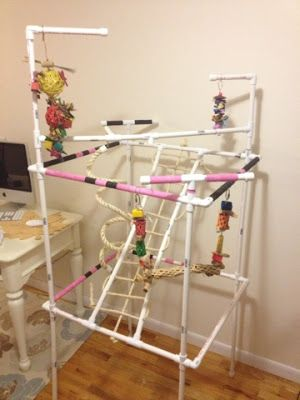 DIY homemade parrot stand and gym for all medium type parrots - conures, amazons, greys, etc.