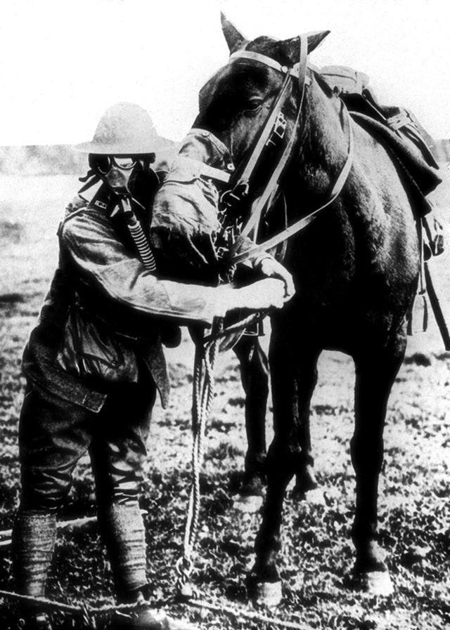 An American soldier demonstrates gas masks for a man and a horse during World War I, around 1917 to 1918.