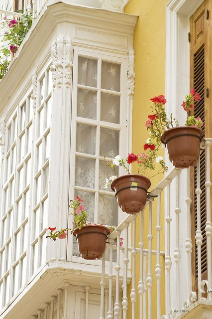 check out these windows!: Balconies, Mellow Yellow, Balcony Ideas, Posts, French Country, Windows, By, Garden, Flower