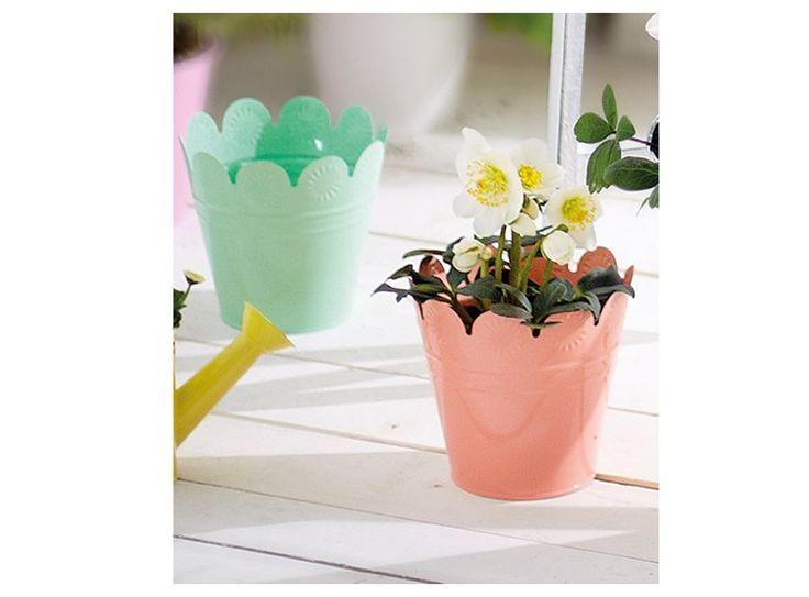 Net even anders dan anders, deze bloempotjes met schulprand. Ze geven jouw bloemen meer uitstraling en zijn verkrijgbaar in verschillende kleuren. Leuk voor in de voorjaarstuin!