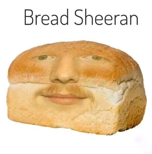 Bread Sheeran - ) in 2021 | Ed sheeran memes, Bread, Ed sheeran love